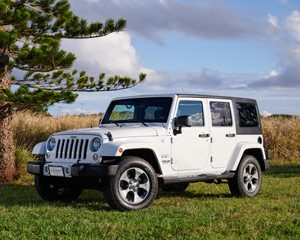 White Jeep Wrangler car parked on grass with pine tree, blue sky and field in background